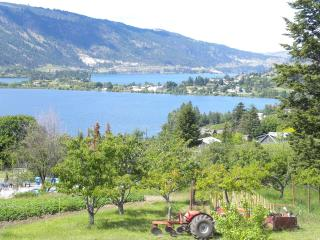 Unique Lake-view vineyard view Home - Kelowna vacation rentals