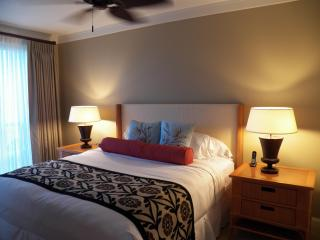 Low $199 Rate now to September!  1-bd, Ka'anapali