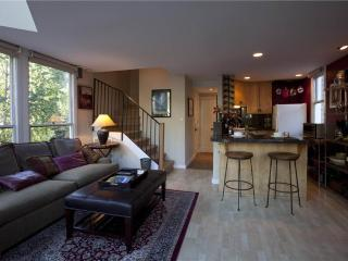 Cornet Creek 303 - Telluride vacation rentals
