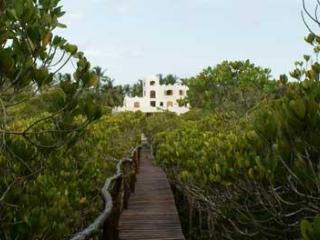 The Boardwalk leads up through the mangrove to the house