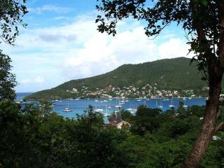 The Nest Fully furnished 1bdr apt in lovely Bequia, Belmont