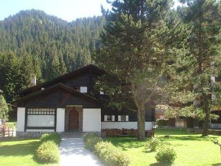 12  bed chalet in Morgins Portes du Soleil - Valais vacation rentals