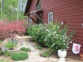 Rustic Mountain Getaway with Hot Tub and free Wifi, Waynesville