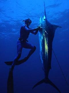 Great Scuba and Fishing