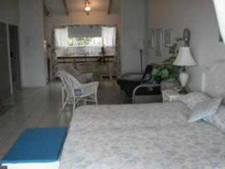 Lighthouse Villas Palm Tree Suite - Image 1 - Tortola - rentals