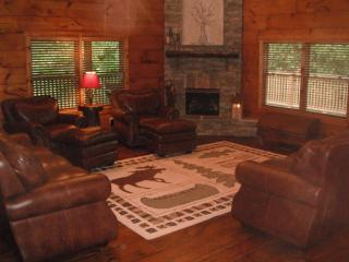 Luxury Log Home Cabin in the Blue Ridge Mtns of VA, Goode