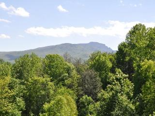 Timbers P-2,  condo w/ Grandfather Mountain view, Boone