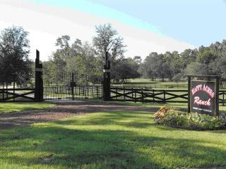 Working Horse Ranch Accommodations for 4 adults, Dunnellon