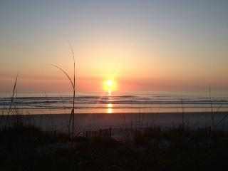 Sea Dunes DIRECT OCEANFRONT town home  pool tennis, New Smyrna Beach