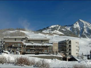 Beautiful Slopeside Accommodations - Perfect for a Romantic Getaway (1150), Crested Butte