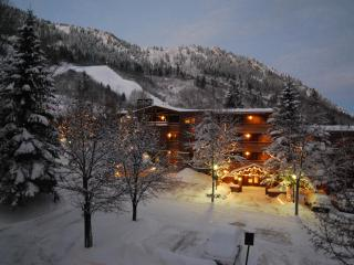 Durant 101B - Ski In/Out Panoramic  Mountain Views through floor to ceiling glass windows, Aspen