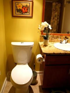 IMPECCABLY clean and functional bathroom with shower/bathtub combo