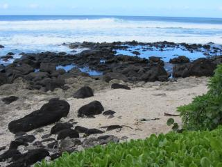 Paradise Elua-Beachfront Cottage  Haleiwa Hawaii