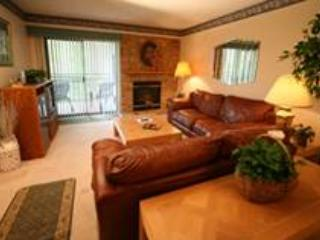 Park Place # 310 - Gatlinburg vacation rentals