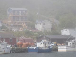 ShoreLark by the Sea 1 BR Nests / 2 BR Guest House, Petty Harbour
