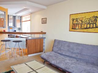 Short rent in Kaunas Zaliakalnis