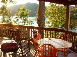 Great Sunsets! hot tub, wi fi, lake access $80.00! - Lake Nantahala vacation rentals