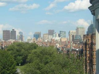 Carlyle Penthouse - Luxury Back Bay 1 Bed + Views, Boston