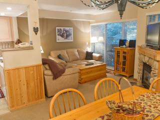 Lagoons 3 a pet-friendly 2 bdrm & private hot tub, Whistler