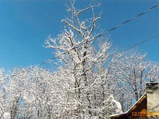 God's Gift 2 bed/2 bath cabin view of Mt LeConte, Gatlinburg