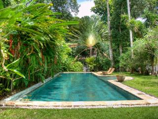 New Villa XVIII Big Garden & Pool incl. Breakfast - Seminyak vacation rentals