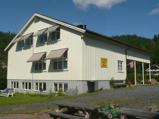 Cozy holiday apartments in southern Norway  !!!, Drangedal