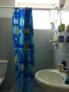 Bathroom, showere with hot water