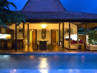 Gorgeous Tropical Joglo Villa Breakfast included - Seminyak vacation rentals