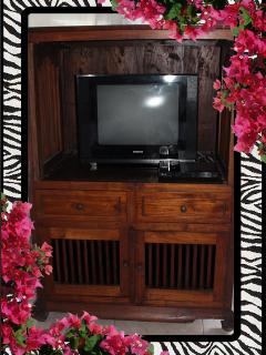 TV/DVD in Master Bedroom Local stations only 26/04/2014