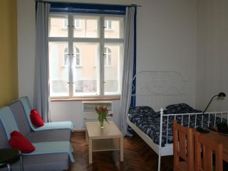 Zizkov apartment, popular area close to Old Town - Prague vacation rentals