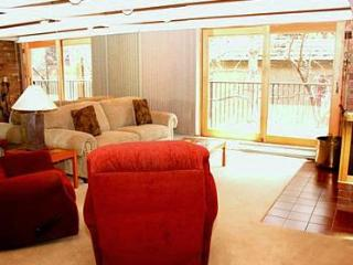 1 Bedroom condo in downtown Aspen- Unit 14