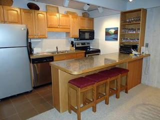 2 Bedroom/2 Bath Condo At Chateau Blanc- Unit 7, Aspen
