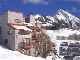 Quaint Butte Condo - Sunny and Spacious Layout (1241), Crested Butte