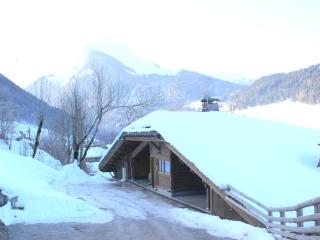MORZINE 4 Bedroom Chalet with HOT TUB Last Minute 9 - 16 FEB! - Morzine vacation rentals