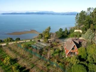 Clifftop boutique self contained country house, Nelson