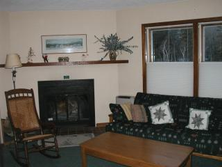 Cozy Ski-In, Ski-Out Condo, Stowe