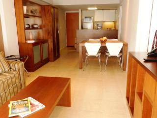 New modern 1 Bedroom apt in the heart of Bariloche, San Carlos de Bariloche