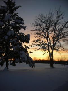In winter, cozy Vista offers beauty & serenity, and miles of private XC skiing out your door.