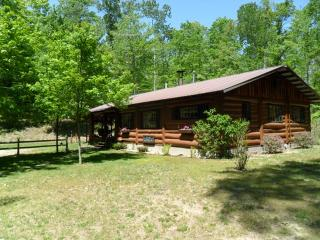 Hand-Built Cabin Next to Manistee National Forest - Manistee vacation rentals