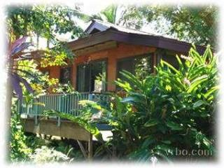 SECLUDED COTTAGE ~ on road to Pristine Anini Beach - Kilauea vacation rentals