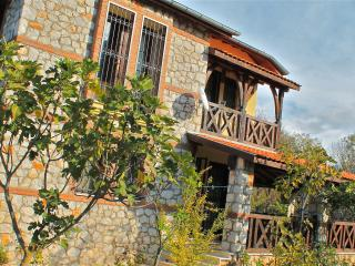 Private Villa In Mature Apple Orchard in Kayakoy - Mugla Province vacation rentals