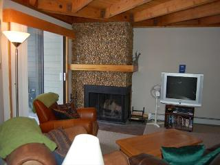 206 F Treehouse Condos - Dillon vacation rentals