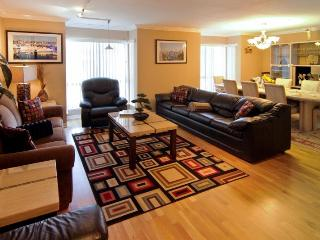 Luxury Condo 1/2 block from Golden Gate Park - San Francisco vacation rentals