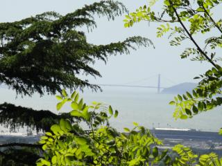 Golden Gate Views- Large Kitchen & Private Laundry, Berkeley