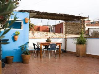 Very nice apartment with private terrace, Barcelona