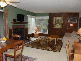 Wintergreen -- Beautiful 2BR/2BA - Great Rates