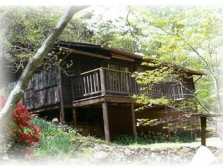 Secluded cabin in Virginia Mountains, near Old Rag - Virginia vacation rentals