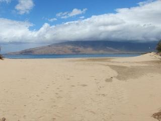 Kihei Bay Vista A-205 Ocean View 1 Bedroom 1 Bath  Near Beach Great Rates!!