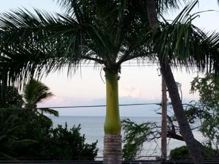 Kailua-Kona OCEANFRONT on Alii Dr.!  2nd level Ocean view, elevator, too - Bend vacation rentals