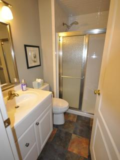 The main level modern bathroom is located across the hall from the bedroom for easy access.